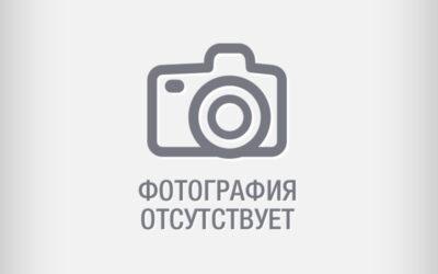 Борцова Ирина Станиславна