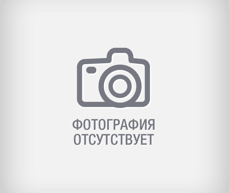 Борцова Надежда Николаевна